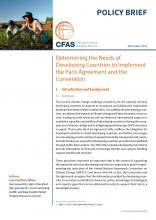 Determining the Needs of Developing Countries to Implement the Paris Agreement and the Convention