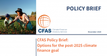 Cover CFAS Policy Brief - Options for the post-2025 climate finance goal