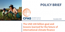 Cover CFAS Policy Brief 2020 - The USD 100 billion goal and lessons learned